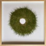 """""""Wiesloch"""", 2020, Gras auf Vlies, 50 cm Durchmesser"""