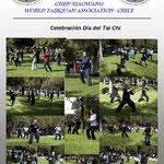 Dia del Tai Chi Cxwta-Chile