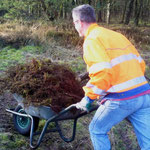 """Heidepflege- eine echte """"Plackerei"""""""