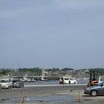小名浜港近辺。ところどころ震災の痕が残っています。