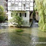 Im Fischerviertel von Ulm, ...