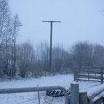 Besichtigung des Mastes am 15.02.2011