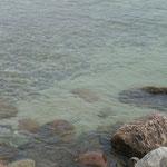Unterwasserwelten Schlei