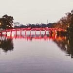 Die Rote Brücke zum Jadeberg-Tempel am Hanoier Hoan Kiem See.