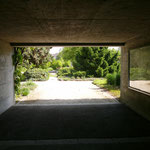 Kannenfeldpark gegenlicht Lumix