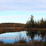 Wildnis (Kanada 2014)