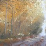 Herbstwald, 2011, 20cm x 65cm
