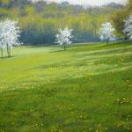 Frühlingswiesen, 2010, 25cm x32cm