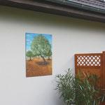 """""""Olivenbäume"""" an einer Hauswand"""