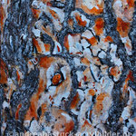 """Kieferinde 1"", 60 cm x 80 cm, Acryl, Spachtelmasse, Marmormehl (in Privatbesitz)"