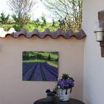 """""""Lavendelfeld"""" an einer Terrassenmauer"""