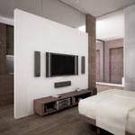 Вид на перегородку с ТВ