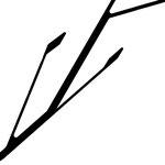 """Благоустройство ручья """"Парковый"""" в городе Калининграде - Гран-при открытого международного конкурса"""