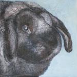 Rudi, 2010, Acryl, Ölkreiden/LW, 40 x 40 cm
