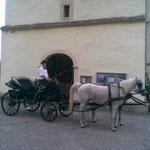 Hochzeit in Stallhofen bei Fam. Kollmann
