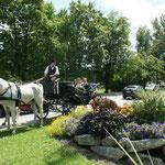 Hochzeit in Fernitz