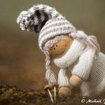 Le petit périple des amis champignons