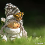 Pilloune et le gardien des jardins