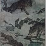 soif de loups