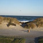 Am Schönberger Strand