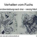 Vergleich telemetrierter Fuchs