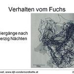 telemetrierter Fuchs