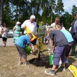 04.06.2011 - So ein Baum braucht auch Wasser - hier stellvertretend durch Kinder beider Partnerorte