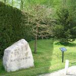 28.04.2006 - Der Baum aus Crawinkel in der Gedenkstätte in Compiègne, der am 5. Mai 1994 gepflanzt wurde
