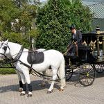 Bestattung Harald Frentzen Mönchengladbach