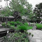 vue en N&B + vert sur le jardin. Merci Nicole pour la photo !