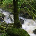 fliessendes Wasser Irland