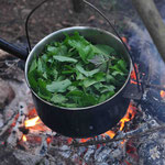 Wildkräutersuppe im Survival Camp