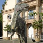 Naturkundemuseum Ottoneum, Foto: DieterSchwerdtle