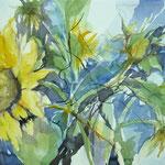 Sonnenblumen...Aquarell, 30 x 60 cm / R. 50 x 80cm, inkl. Rahmen
