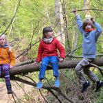 Wald-Erlebnisse (2021)