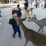 奈良公園で鹿さんたちと!(^^)!