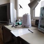 Station 1 & 2: Stromverbrauch verschiedener elektrischer Geräte schätzen und messen