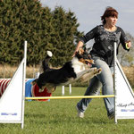 Blaze and me doing agility