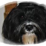 Milow mit einem Jahr