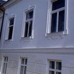 Villa Baden bei Wien_Kalk und Holz_BM Leo Steiner_Begleitung Ing. Bernhard Ringswirth, MSc