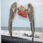 Silber 925, Seeschwalbenfügel und Gestein aus Island, Leinwand