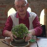 Giancarlo esamina la prima pianta