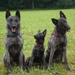 Sky,Fiby,Kaylee (Sky's Mama)