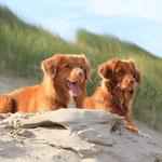 Lucas und Ayuna beobachten den Strand