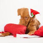 Weihnachtsmann zerlegt