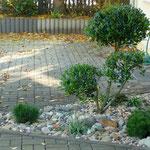 Auch kleinste Pflanzflächen lassen sich anspruchsvoll gestalten.