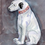 ビクター犬 6月