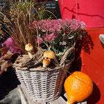 Gepflanzter Korb mit Schwammerl und Kürbis