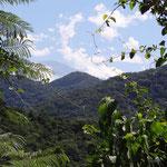 Auf der kuriven grünen Cornisa zwischen Salta und Jujuy