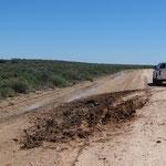 Unterwegs im Mungo National Park: Vor uns ist einer im Match steckengeblieben...